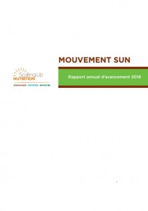 2018 SUN Movement Progress Report